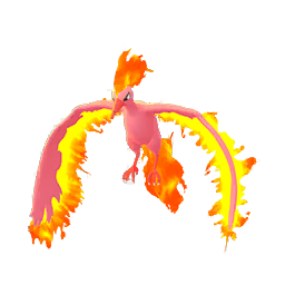 Shiny Moltres in Pokémon GO
