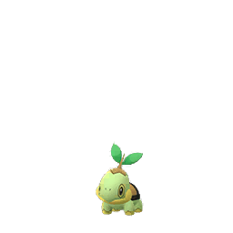 normal turtwig