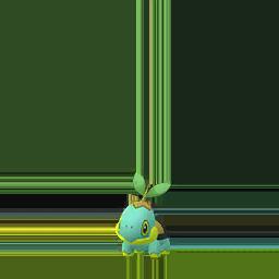 Shiny Turtwig