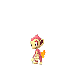 Shiny Chimchar