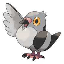 Pokemon GO Pidove