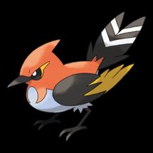 Pokemon GO Fletchinder